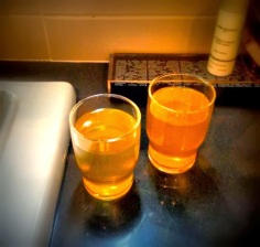 putinwater
